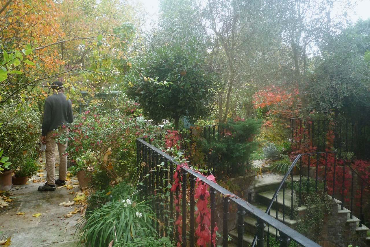 Ladbroke Square garden before we started landscaping