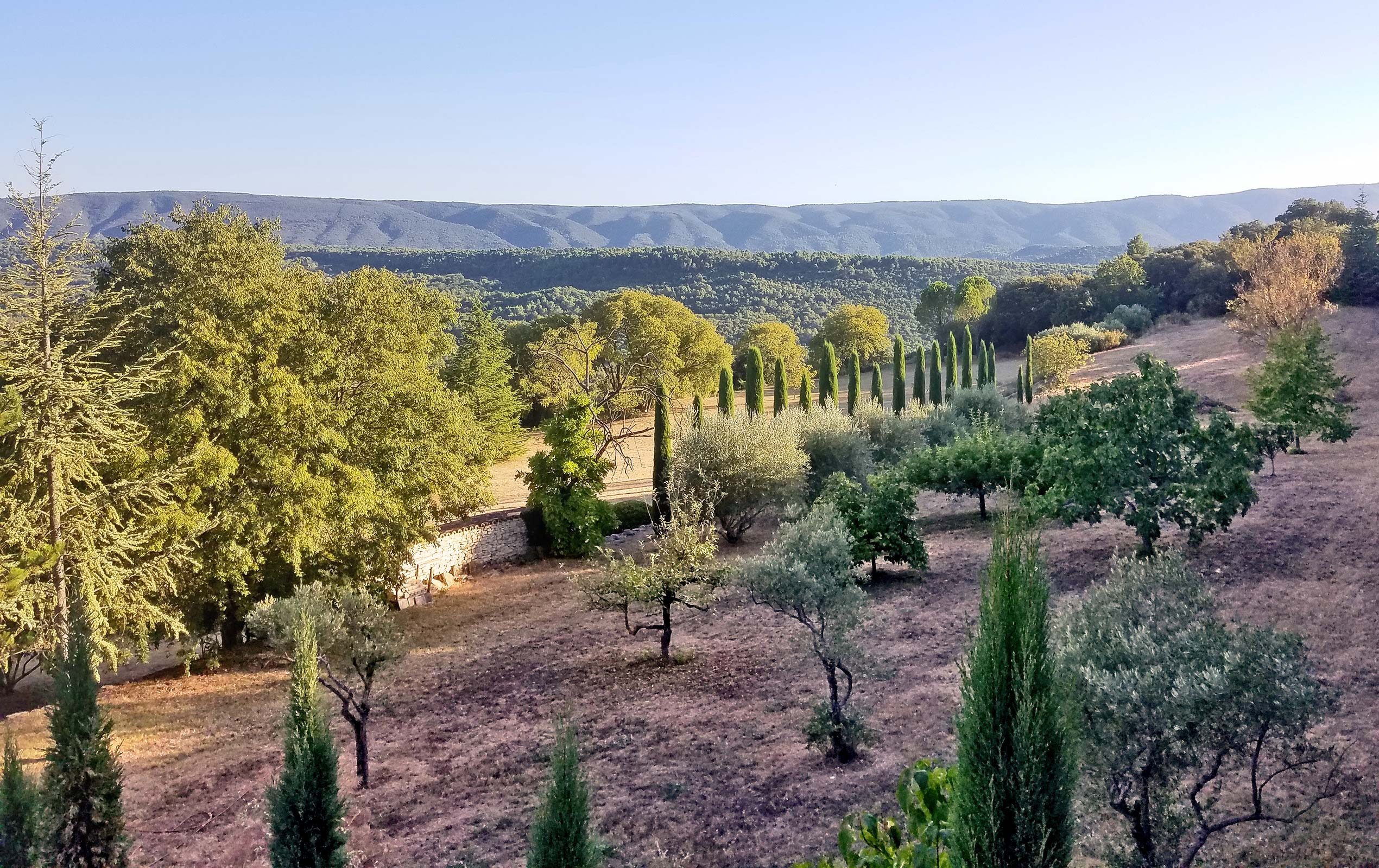 Provence Landscape and Garden Design by Maïtanne Hunt